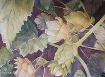 Aquarellmalerei, Pflanzen, Hopfen, Negativmalerei