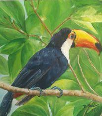 Tropen, Ölmalerei, Tukan, Vogel