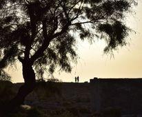 Paar, Sonnenuntergang, Baum, Fotografie