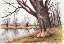 Landschaft, Baumstudie, Fluss, Flussufer