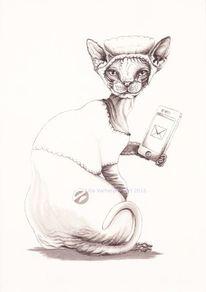 Sphinx, Federzeichnung, Buchtitel, Katze