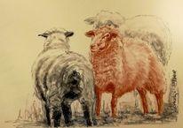 Skizze, Zeichnung, Kohlezeichnung, Tiere