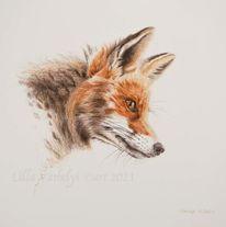 Tuschmalerei, Fuchs, Wildtier, Tierwelt