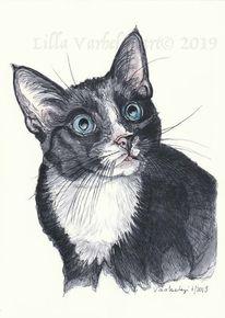 Tiermalerei, Kater, Auftragsarbeit, Katze