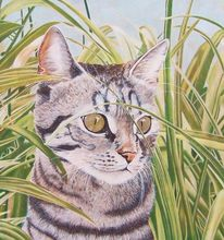 Malerei, Katze, Gras,