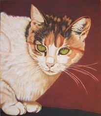 Realistische malerei, Katze, Tierportrait, Katzenportrait