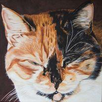Harzölmalerei, Tiere, Katze, Tierportrait