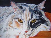 Realistische malerei, Tierportrait, Harzölmalerei, Katzenaugen