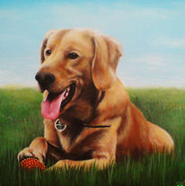Realismus, Hundeportrait, Acrylmalerei, Hund