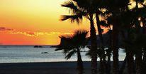 Sonnenuntergang, Palmen, Überwintern, Strand
