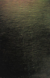 Erde, Waldboden, Waldsee, Spuren