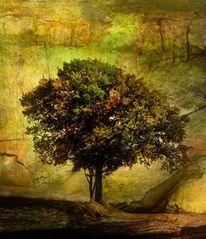 Baum, Herbst, Landschaft, Digitale kunst