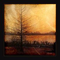 Baum, Natur, Stimmung, Landschaft