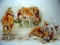 Haflinger, Pferdeportrait, Malerei