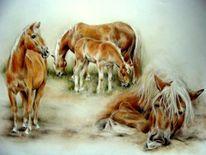 Haflingerherde, Pferdegruppe, Pferdezeichnung, Haflinger