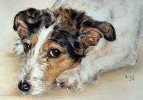 Hundeportrait, Tierportrait, Hundezeichnung, Malerei