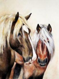 Pferde, Pferdezeichnung, Kaltblüter, Zeichnungen