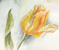 Aquarellmalerei, Tulpen, Aquarell, Roots