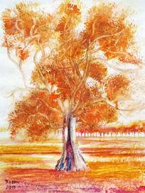 Natur, Aquarellmalerei, Eukalyptusbaum baum, Landschaft