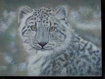 Katze, Malerei, Tiere, Schneeleopard