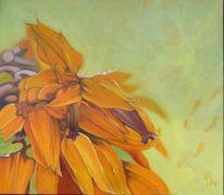 Goldfinger, Orange, Pflanzen, Mexiko