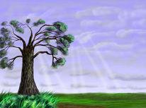 Wolken, Landschaft, Himmel, Sonne