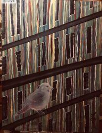 Vogel, Lebensader, Farben, Strom
