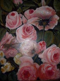 Rosa, Blumen, Rose, Eden