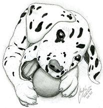 Bleistiftzeichnung Tiere Zeichnung 812 Bilder Und Ideen Zeichnen