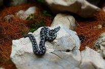 Hornotter, Kroatischer name poskok, Schlange, Fotografie