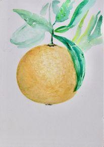 Orange, Skizze, Aquarellmalerei, Aquarell