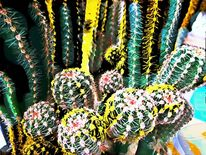 Kaktus, Digitale kunst, Digital