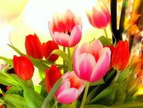 Tulpen, Outsider art, Blumen, Digitale kunst