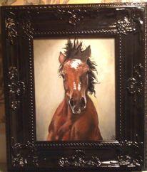 Pferd portrait kaltblut, Malerei
