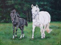 Pferde, Fohlen, Malerei, Auftrag
