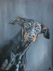 Portrait, Hund, Dobermann, Malerei