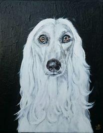 Hund, Weiß, Malerei