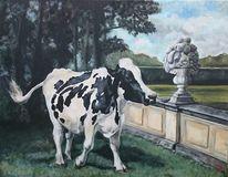 Kuh, Schlosspark, Mauer, Landschaft