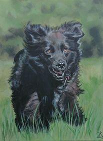 Hund, Wiese, Malerei