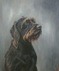 Jagdhund, Hundeportrait, Hund, Malerei