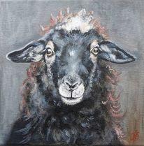 Bauernhoftiere, Schaf, Schafbild, Malerei