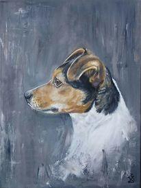 Jack russel terrier, Hund, Hundekopf, Malerei