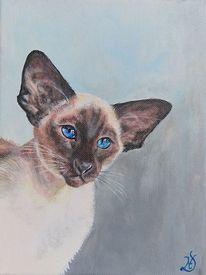 Kater, Katze, Malerei,
