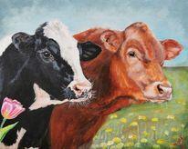 Kuh, Rind, Tulpen, Löwenzahn