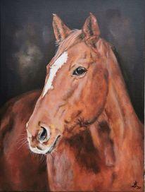 Pferde, Fuchs, Stute, Malerei