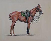 Polosport, Pferde, Polo, Pony