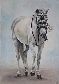 Andalusier, Pferde, Schimmel, Malerei