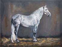Schimmel, Apfelschimmel, Pferde, Malerei