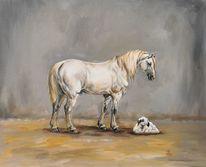 Lamm, Schaf, Pferde, Stall