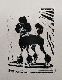 Hund, Schwarz, Pudel, Druckgrafik